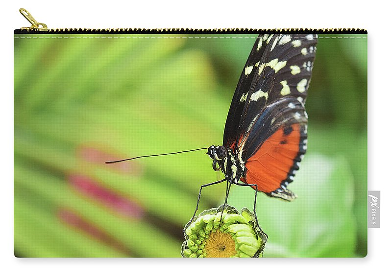 Butterfly Carry-all Pouch featuring the photograph Flower Balance by Sydney Thompson