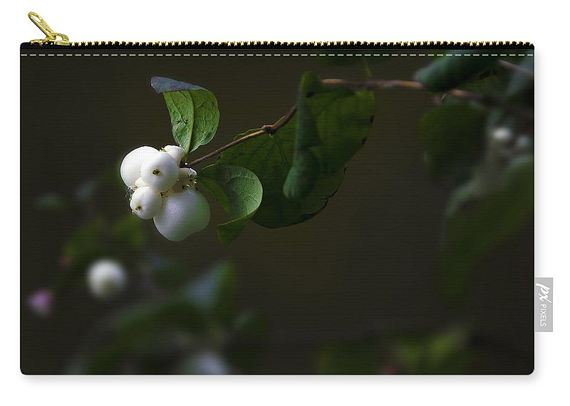 Botanic Carry-all Pouch featuring the photograph Flower Balls by Svetlana Sewell