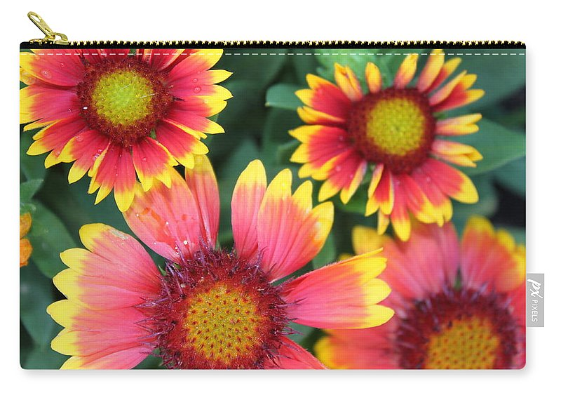 Flower Carry-all Pouch featuring the photograph Flower Burst by Lauri Novak