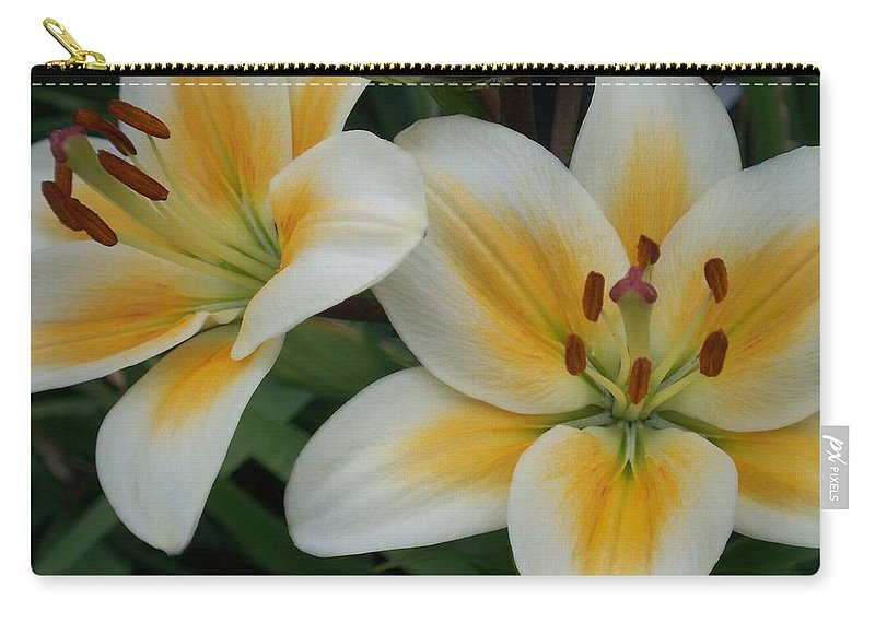 Flower Carry-all Pouch featuring the photograph Flower Close Up 2 by Anita Burgermeister