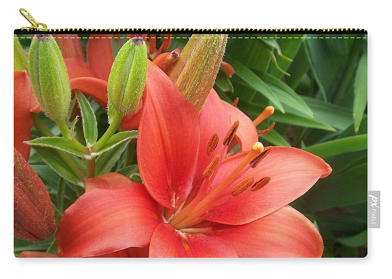 Flower Carry-all Pouch featuring the photograph Flower Close Up 4 by Anita Burgermeister