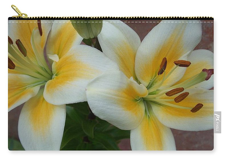 Flower Carry-all Pouch featuring the photograph Flower Close Up 5 by Anita Burgermeister