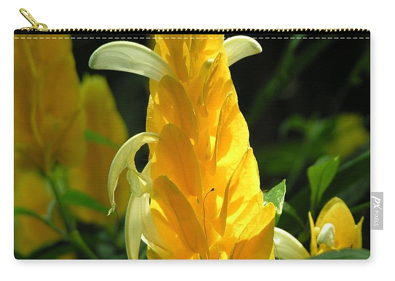 Flower Carry-all Pouch featuring the photograph Flower by Diane Greco-Lesser