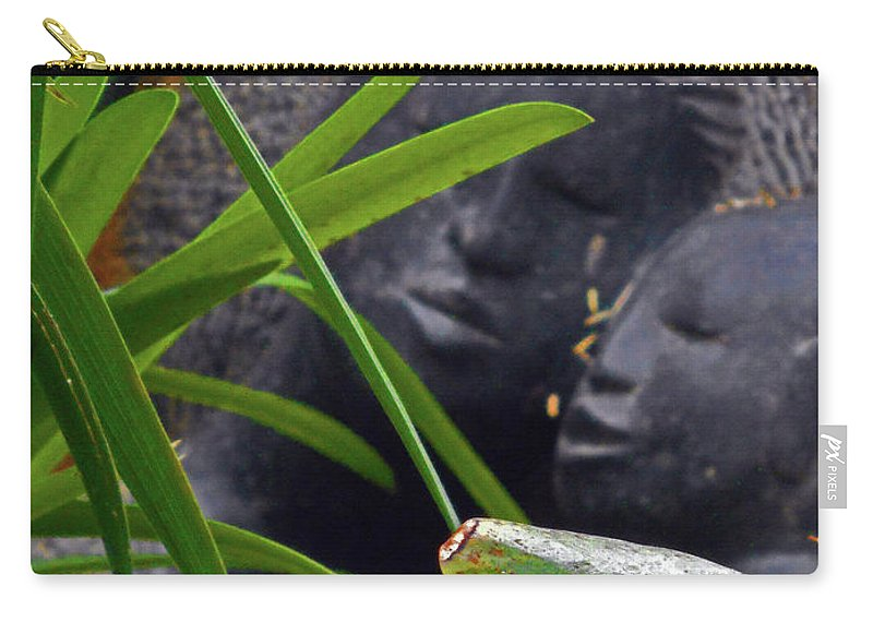 The Dooms Carry-all Pouch featuring the photograph Flower Dome 37 by Ron Kandt