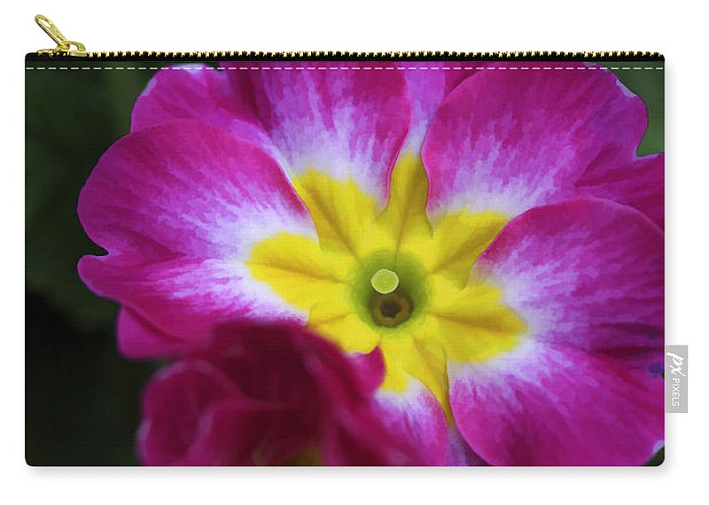 Flower Carry-all Pouch featuring the photograph Flower In Spring by Deborah Benoit