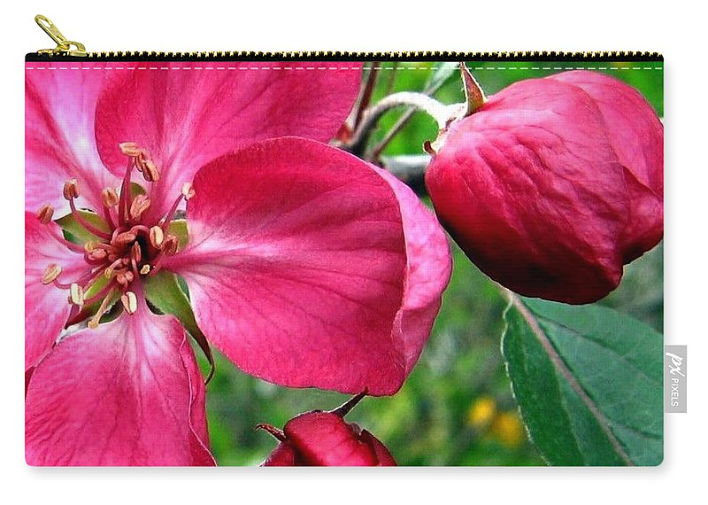 Flowering Crab Apple Carry-all Pouch featuring the photograph Flowering Crab Apple by Will Borden