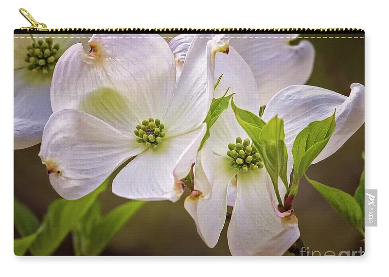 White Carry-all Pouch featuring the photograph Flowering Dogwood by Emma England