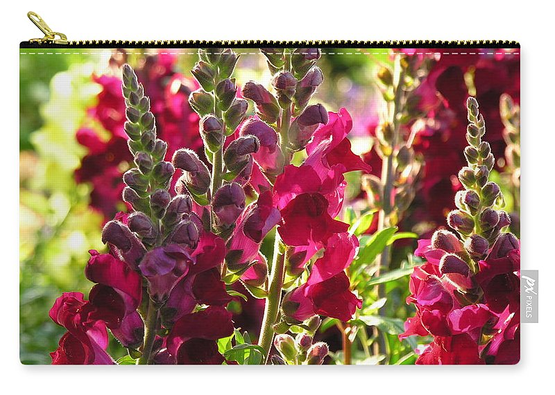 Flowers Carry-all Pouch featuring the photograph Flowers by Diane Greco-Lesser