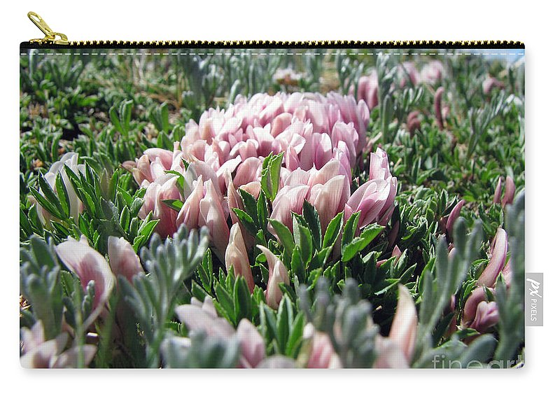 Flowers Carry-all Pouch featuring the photograph Flowers In The Alpine Tundra by Amanda Barcon