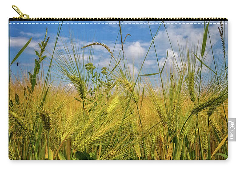 Appalachia Carry-all Pouch featuring the photograph Flowers In The Wheat by Debra and Dave Vanderlaan