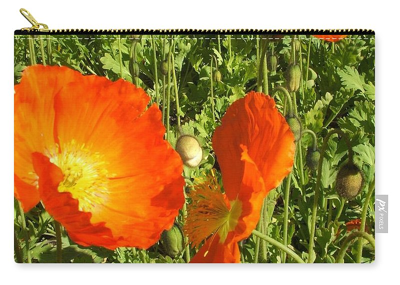 Flowers Carry-all Pouch featuring the photograph Flowers by Shari Chavira