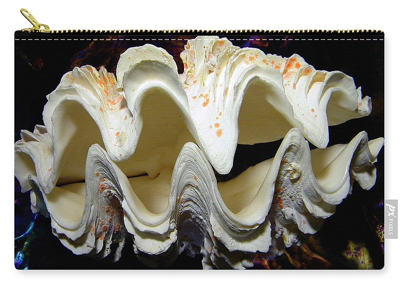 Frank Wilson Carry-all Pouch featuring the photograph Fluted Giant Clam Shell by Frank Wilson