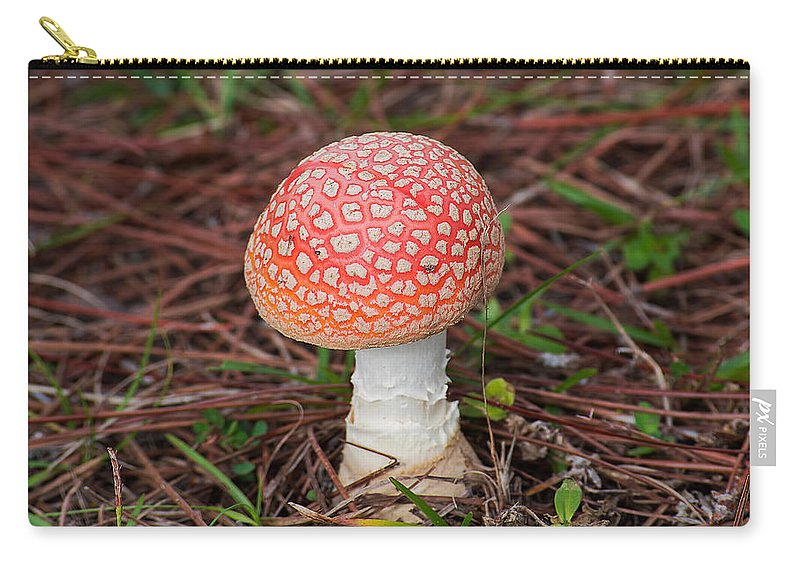 Mushroom Carry-all Pouch featuring the photograph Fly Agaric Mushroom by Kenneth Albin