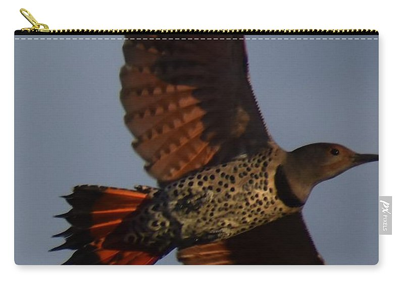 Northern Flicker Carry-all Pouch featuring the photograph Fly Flicker Fly by Linda Burns