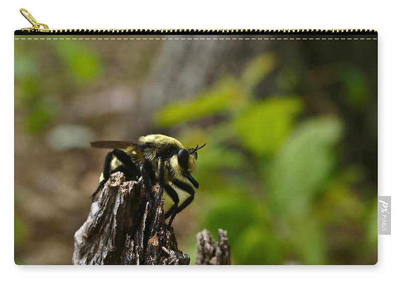 Fly Carry-all Pouch featuring the photograph Fly On Mountain by Douglas Barnett