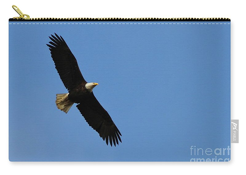 Eagle Carry-all Pouch featuring the photograph Fly Over by Rick Monyahan