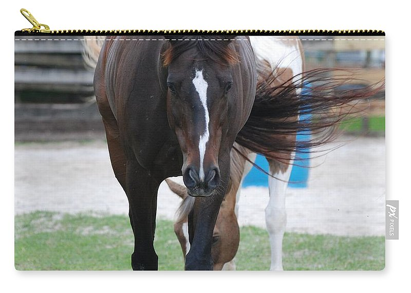 Horses Carry-all Pouch featuring the photograph Flying Circus by Rob Hans