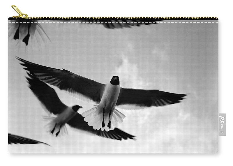 Bird Carry-all Pouch featuring the photograph Flying High by Marilyn Hunt