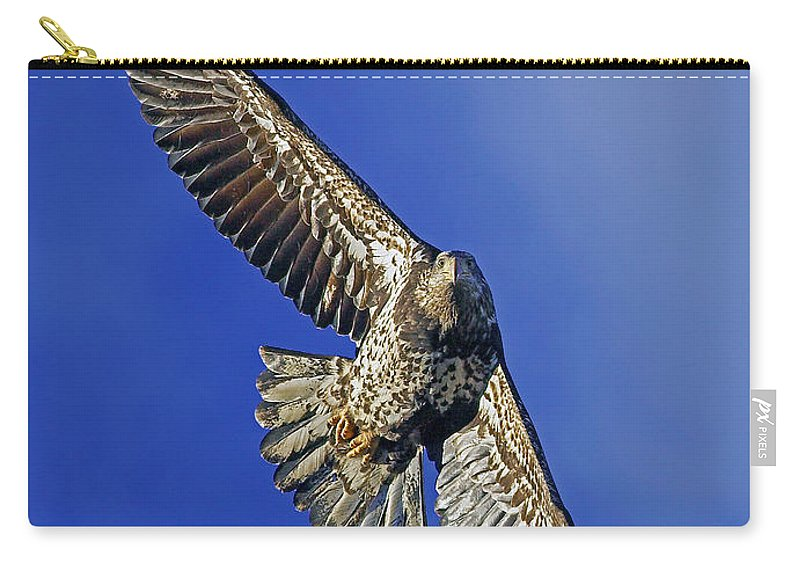 Bald Eagle Carry-all Pouch featuring the photograph Flying High by Randall Ingalls