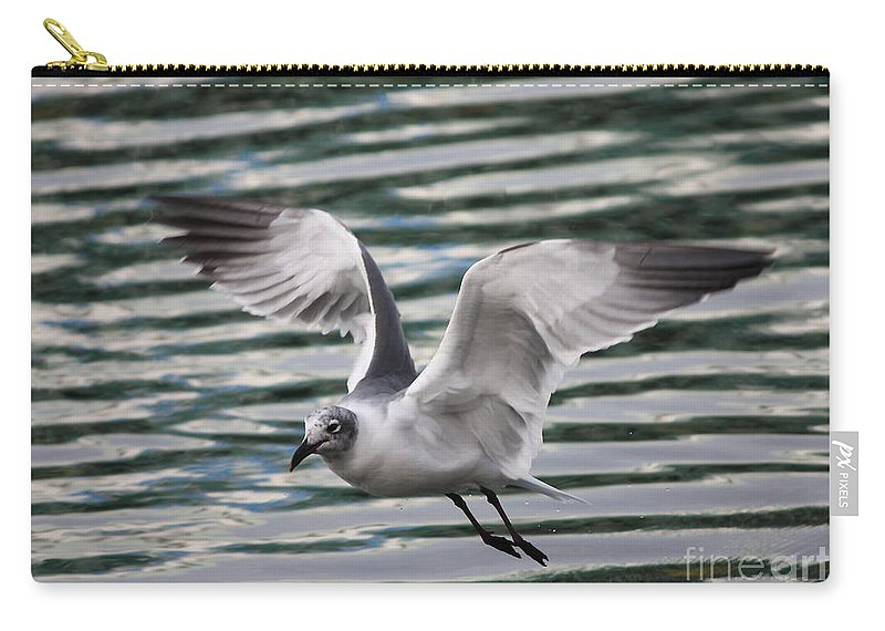 Flying Seagull Carry-all Pouch featuring the photograph Flying Seagull by Carol Groenen