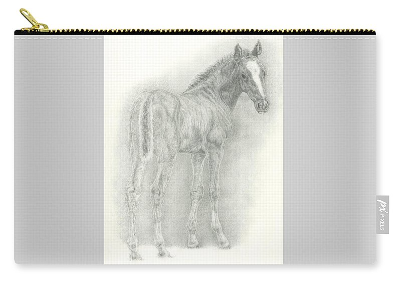 Foal Carry-all Pouch featuring the drawing Spring Foal by Jennifer Nilsson