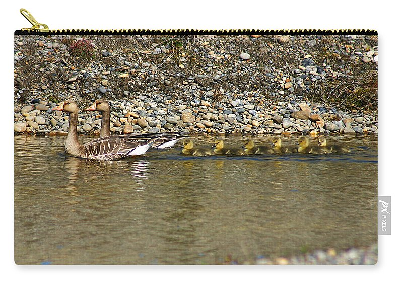 Ducks Carry-all Pouch featuring the photograph Follow The Leader by Anthony Jones