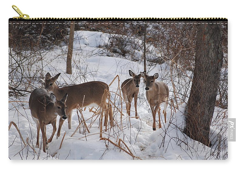 Deer Carry-all Pouch featuring the photograph Follow The Leader by Lori Tambakis