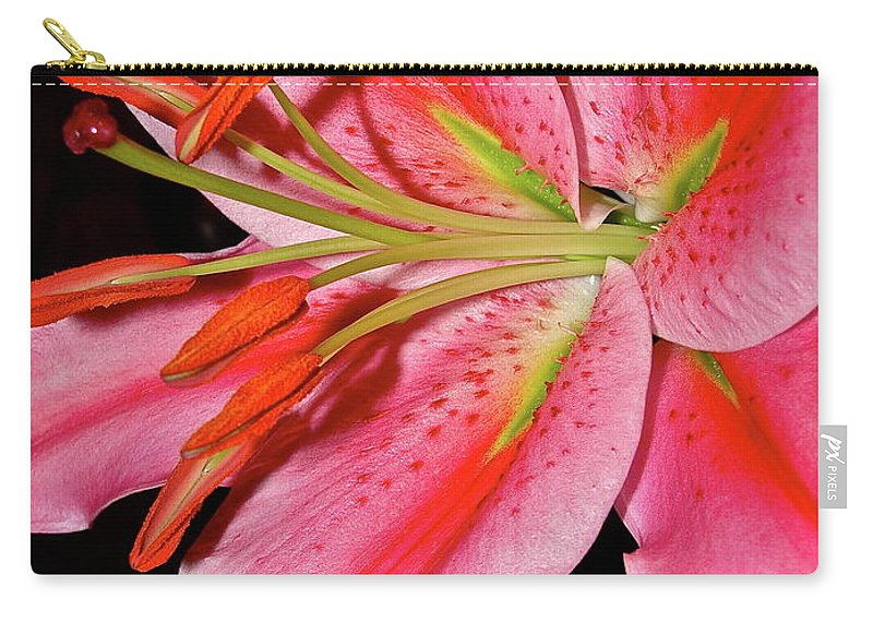 Flowers Carry-all Pouch featuring the photograph For Mom by Diana Hatcher