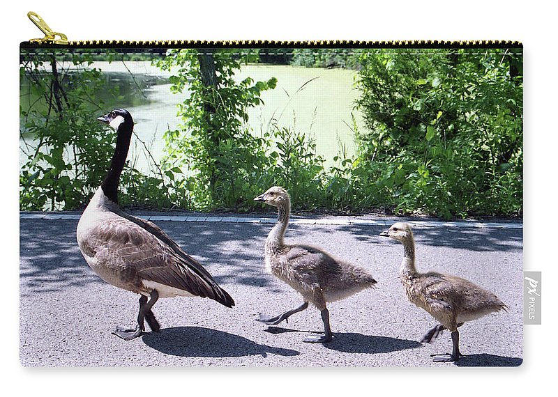 Geese Carry-all Pouch featuring the photograph Three On A March by Pat Kenyon