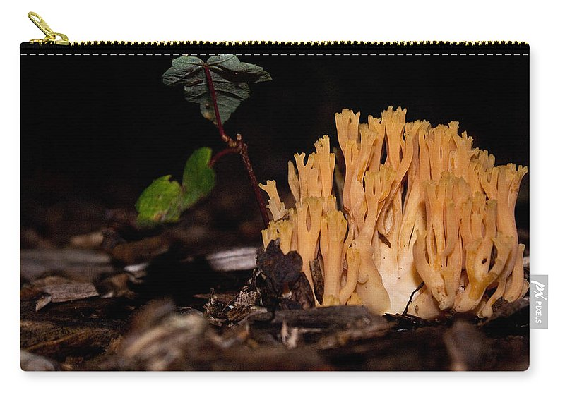 Coral Carry-all Pouch featuring the photograph Forest Coral Fungi by Douglas Barnett