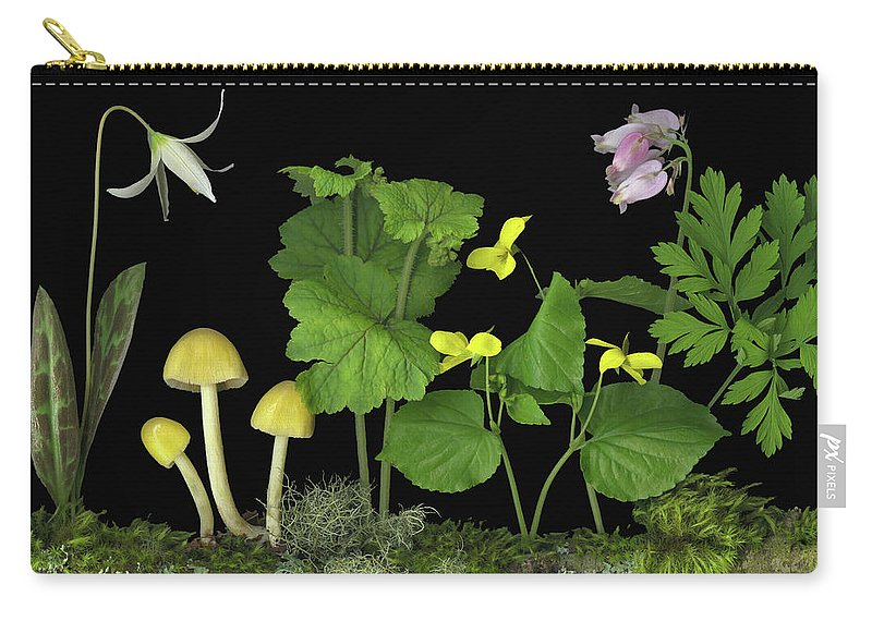 Pacific Northwest Native Species; Fawn Lily Carry-all Pouch featuring the digital art Forest Floor by Sandi F Hutchins