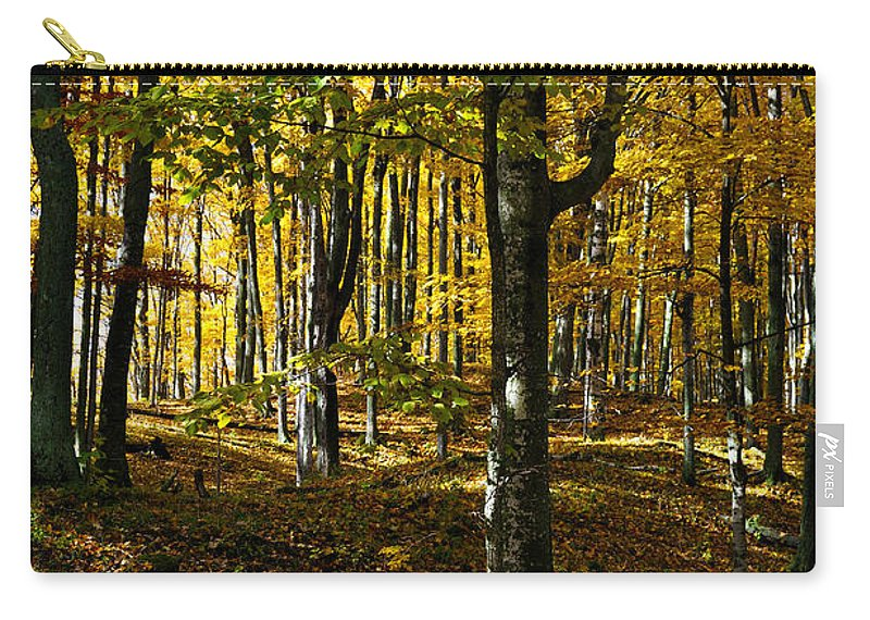 Trees Carry-all Pouch featuring the photograph Forest Floor Two by Tim Nyberg