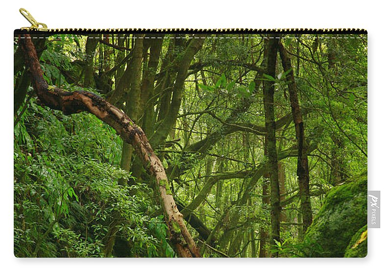 Woodland Carry-all Pouch featuring the photograph Forest by Gaspar Avila