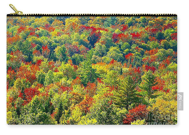 Forest Carry-all Pouch featuring the photograph Forest Of Color by David Lee Thompson