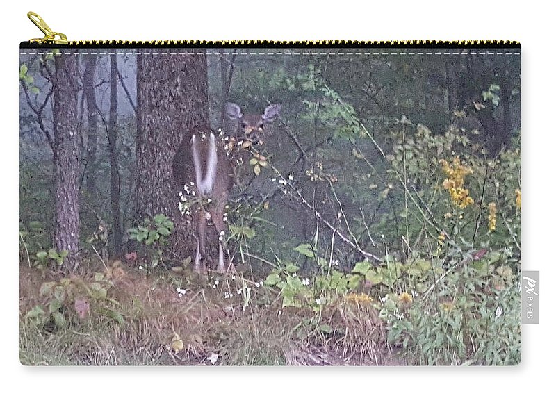 Forest Carry-all Pouch featuring the photograph Forest Peek A Boo by Kevin Humphrey