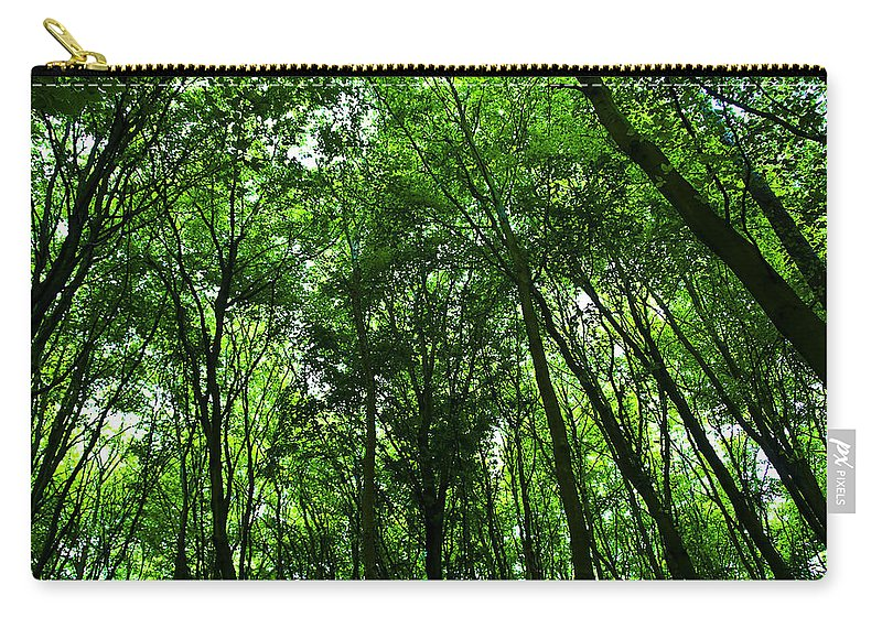 Forest Carry-all Pouch featuring the photograph Forest by Svetlana Sewell