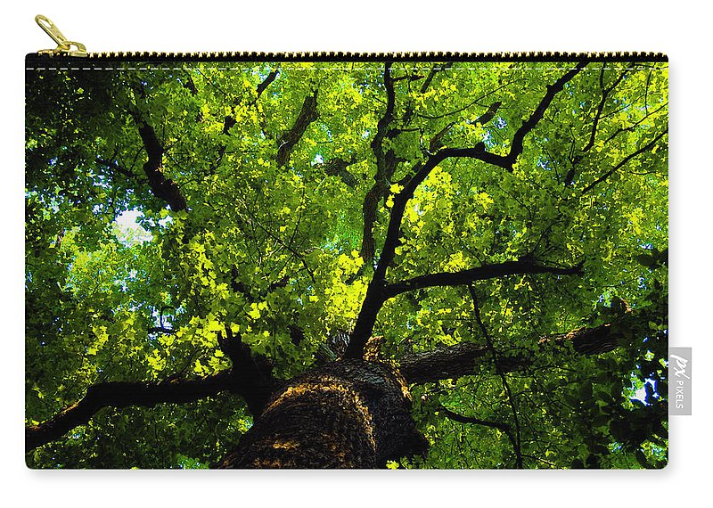 Forest Carry-all Pouch featuring the painting Forest Top by David Lee Thompson
