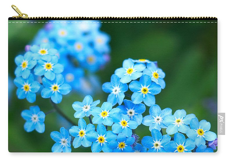 Lehtokukka Carry-all Pouch featuring the photograph Forget -me-not 4 by Jouko Lehto