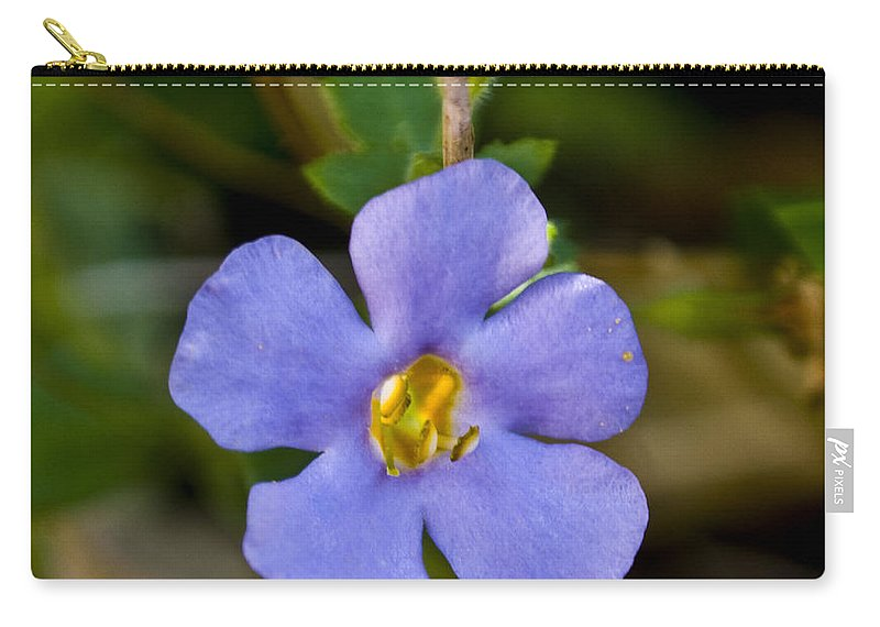 Blue Carry-all Pouch featuring the photograph Forget Me Not by Svetlana Sewell