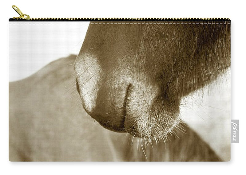 Horse Carry-all Pouch featuring the photograph Form Of A Horse by Toni Hopper