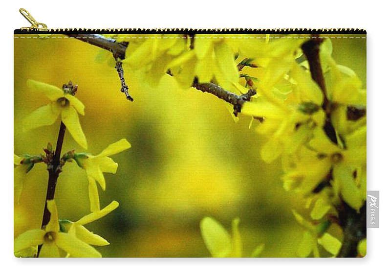 Spring Carry-all Pouch featuring the photograph Forsythia At The Hacienda by David Lane