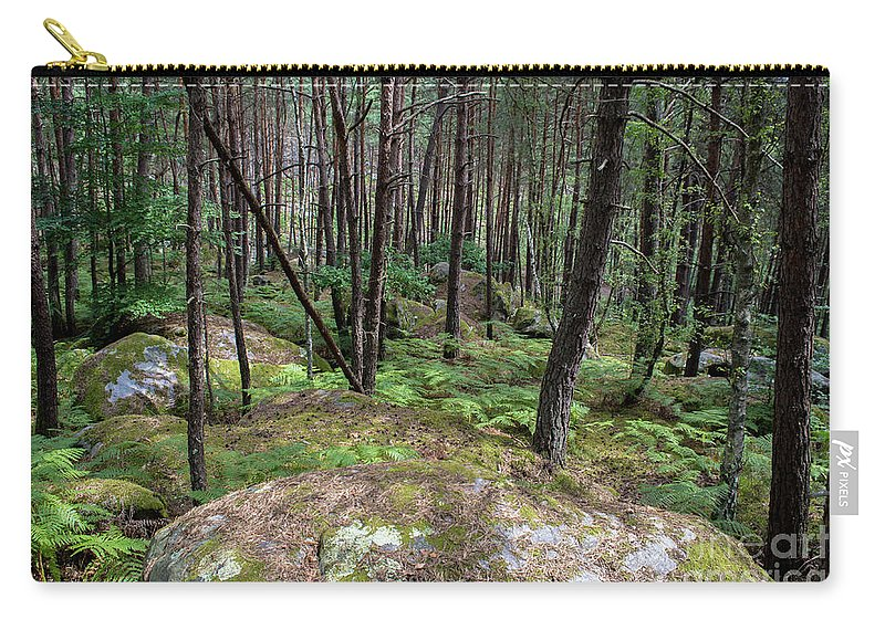 France Carry-all Pouch featuring the photograph Fountainbleau Forest by Bernd Billmayer