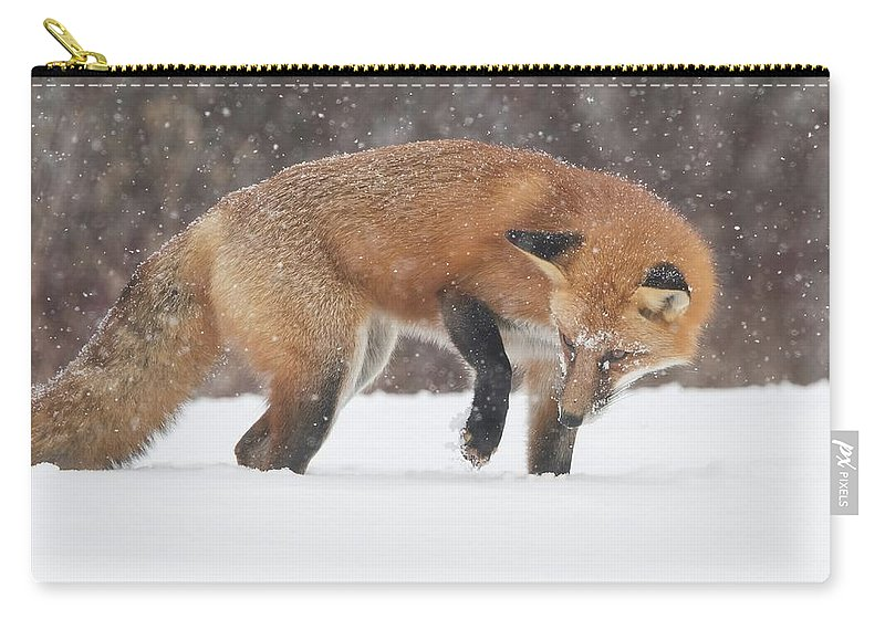 Fox Carry-all Pouch featuring the photograph Fox Hunt by CR Courson