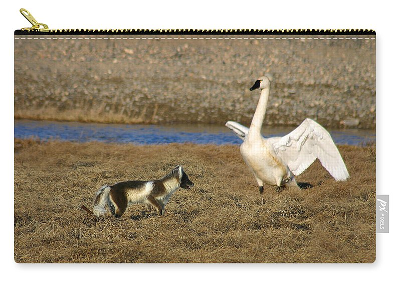 Fox Carry-all Pouch featuring the photograph Fox Vs Swan by Anthony Jones