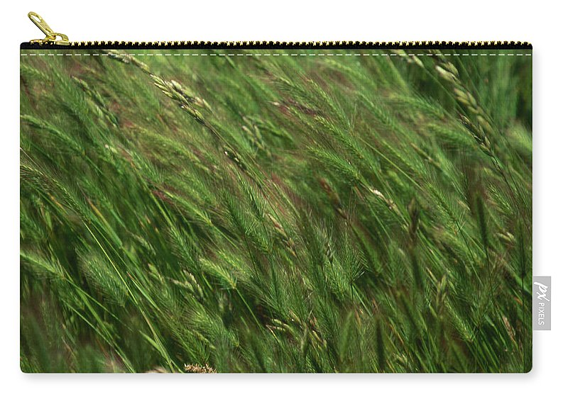 Foxtail Barley Carry-all Pouch featuring the photograph Foxtail Barley - Salisbury Potrero by Soli Deo Gloria Wilderness And Wildlife Photography