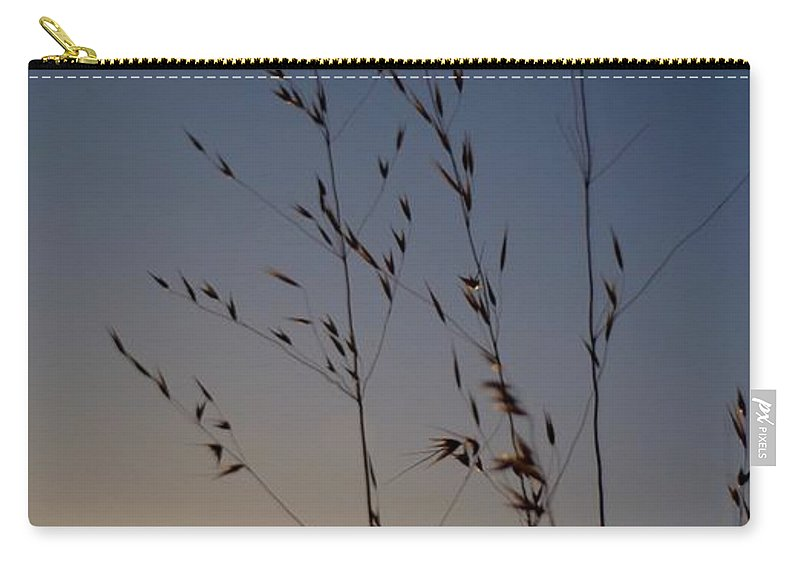 Sunset Carry-all Pouch featuring the photograph Foxtail Sunset by Alex King