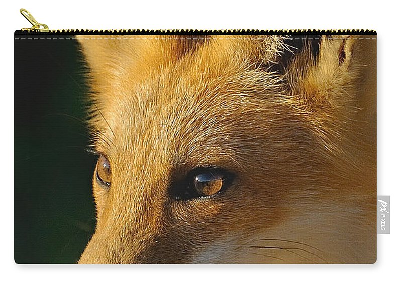 Fox Carry-all Pouch featuring the photograph Foxy Lady by William Jobes