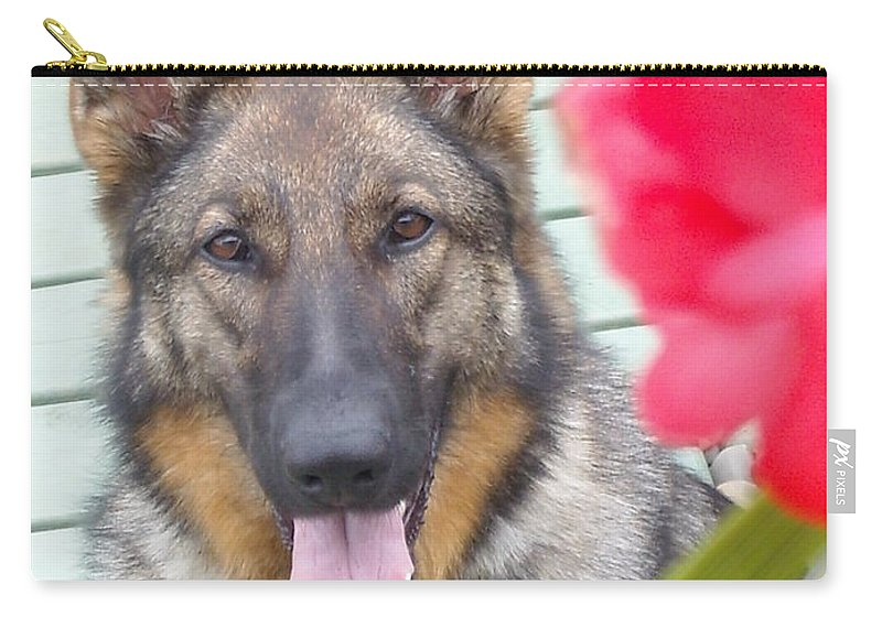 Dog Carry-all Pouch featuring the photograph Foxy by Line Gagne