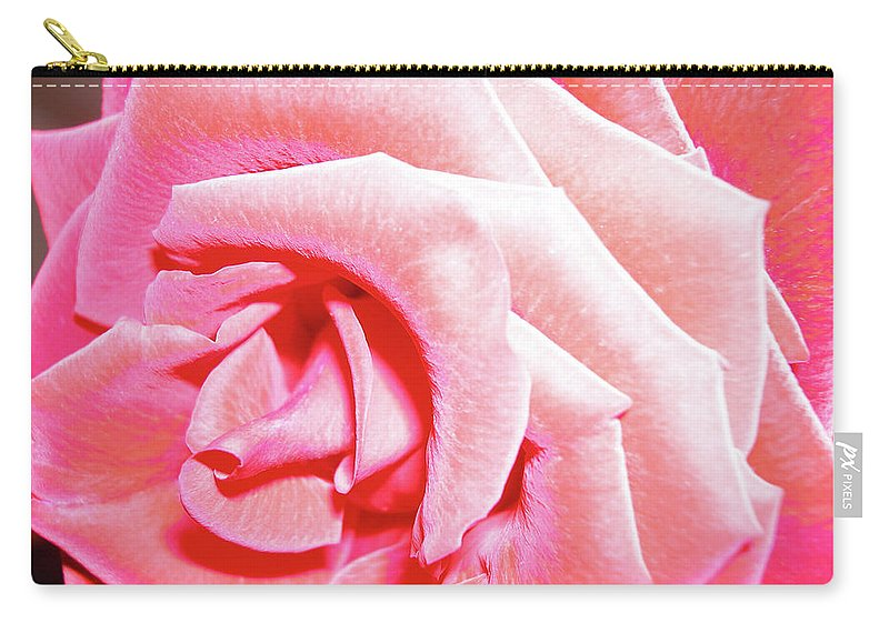 Rose Carry-all Pouch featuring the photograph Fragrant Rose by Marie Hicks