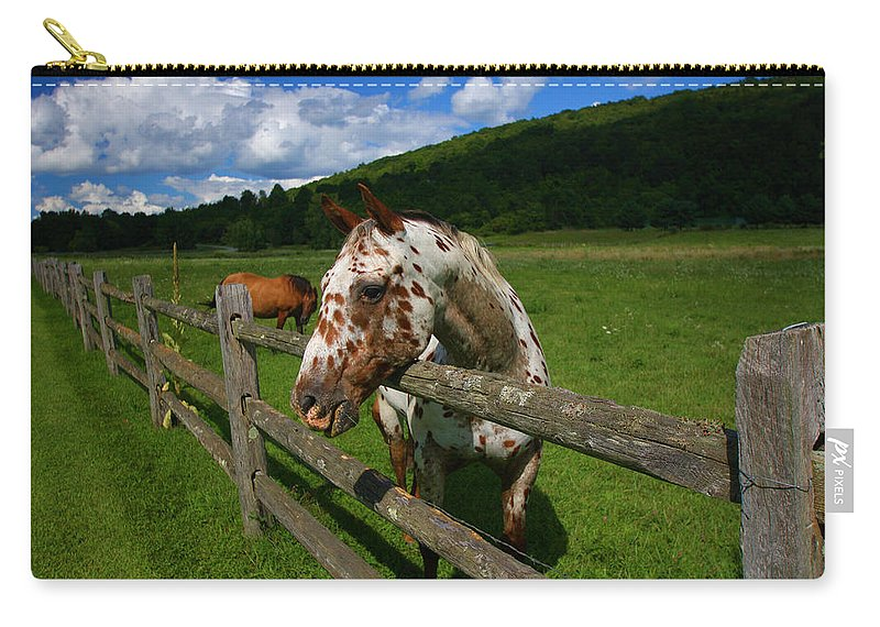 Horse Carry-all Pouch featuring the photograph Freckles by Karol Livote